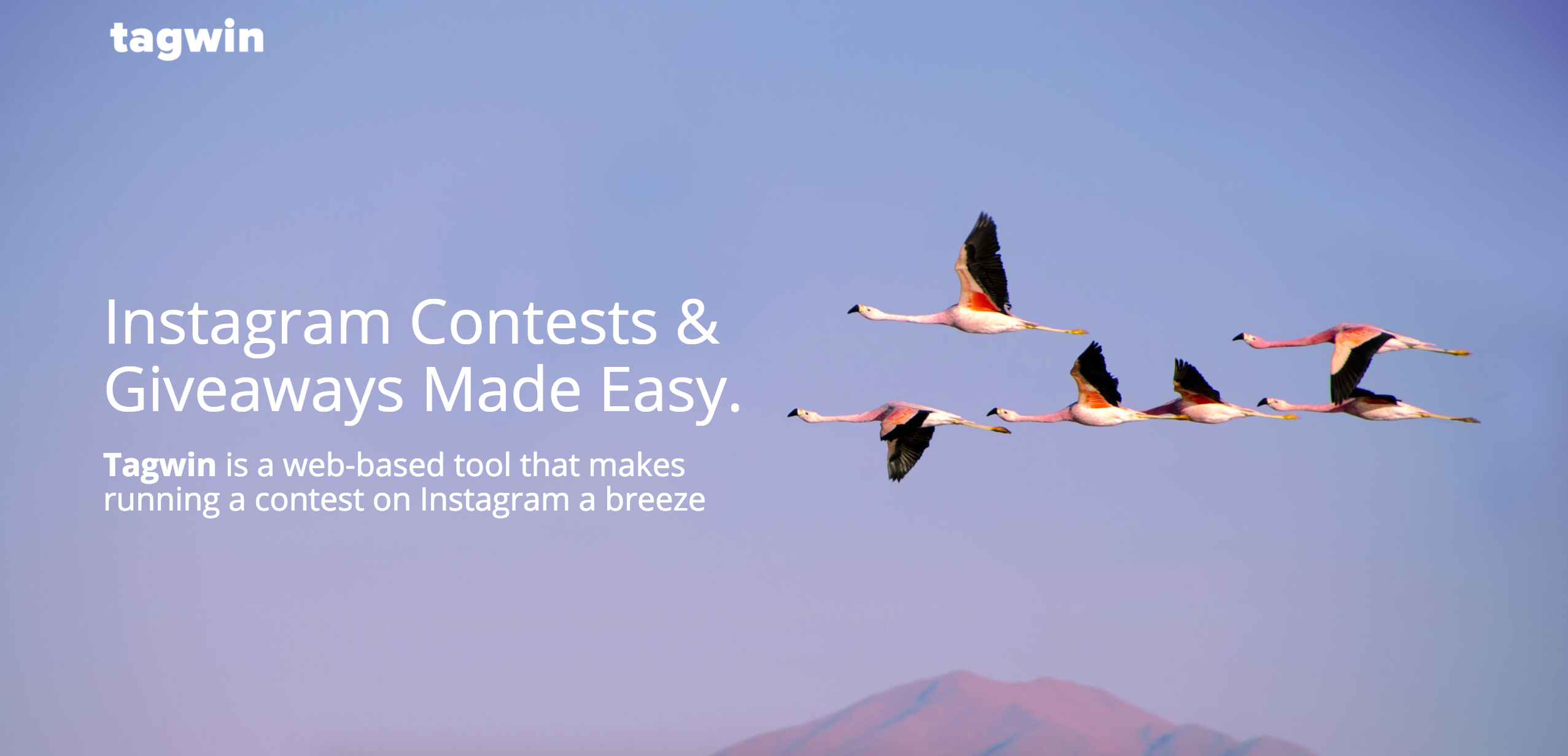 Launch An Instagram Contest With Tagwin screenshot